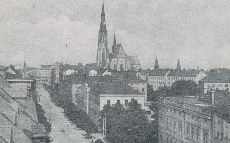 Katedralaca1906
